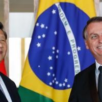 Governo Bolsonaro é o melhor que a China poderia imaginar', diz especialista