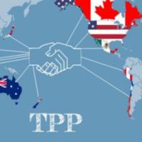 Possibilidade de ingresso da China em bloco comercial preocupa membros da Parceria Transpacífica